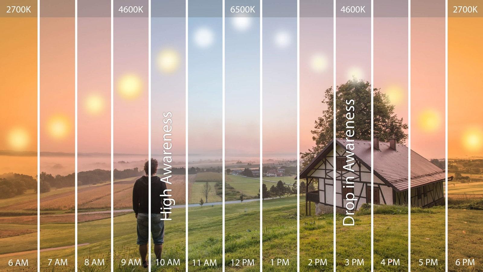 Cicardian lighting explained visually